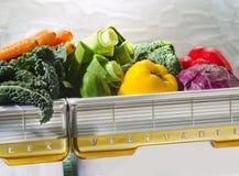 Légumes dans le rétro coffre de réfrigérateur Photos libres de droits