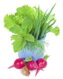 Légumes dans une cuvette bleue Photos stock
