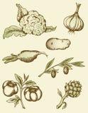Légumes de cru illustration libre de droits