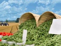 Légumes de gens d'alimentation de fermiers? Photographie stock