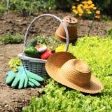Légumes de jardin Photo libre de droits
