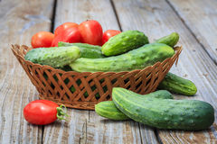 Légumes de jardin Photos libres de droits