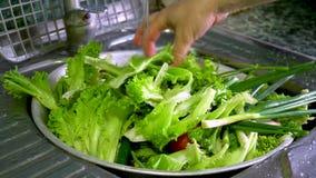 Légumes de lavage avec de l'eau l'eau du robinet à la maison banque de vidéos