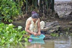 Légumes de lavage de femme dans le Mekong Photo stock