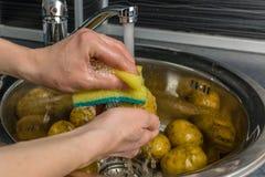 Légumes de lavage sous l'eau courante photo libre de droits