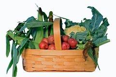 légumes de panier Image libre de droits