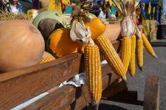 Légumes de récolte d'automne un chariot en bois images libres de droits