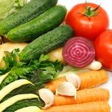 Légumes de ramassage Photographie stock libre de droits