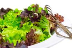 Légumes de salade Image libre de droits