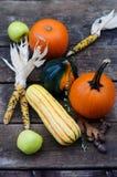 Légumes de thanksgiving Photos stock