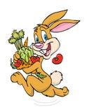 Légumes de transport de lapin Images stock
