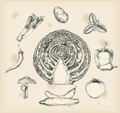 Légumes dessinant les objets d'isolement Image stock