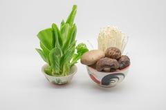 Légumes et champignon Photos libres de droits