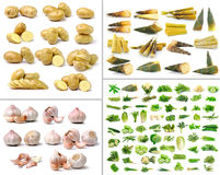 Légumes et collection d'herbe sur le fond blanc Photographie stock
