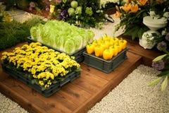 Légumes et fleurs Photographie stock libre de droits