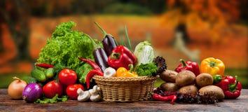 Légumes et fruits images stock