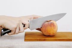 Légumes et fruits sur la pluie Fruits et légumes dans la coupe Images libres de droits