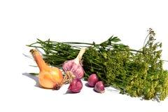 Légumes et verts photo libre de droits