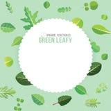 Légumes feuillus de verts Photos libres de droits