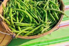 Légumes frais au farmer& x27 ; le marché de s comprenant des haricots, courge, a laissé Images libres de droits