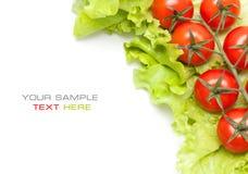 Légumes frais. Cerise de tomates et salade verte Photos stock