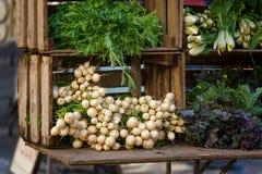 Légumes frais chez Union Square Greenmarket, Manhattan, New York City image libre de droits