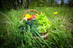 Légumes frais dans le panier photographie stock libre de droits