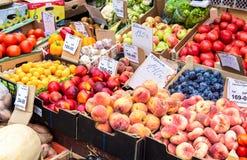 Légumes frais de nouvelle récolte prêts à la vente au farme local Photographie stock