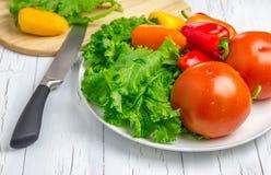 Légumes frais du plat et d'un conseil en bois avec des légumes sur le fond photo stock