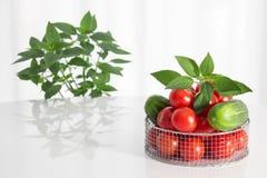 Légumes frais et herbes image libre de droits