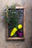 Légumes frais et herbes sur une texture rustique brûlée en bois pour images libres de droits