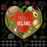 Légumes frais et organiques Photos stock