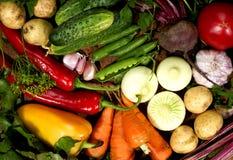 Légumes frais et verts sur un conseil en bois images libres de droits