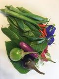 Légumes frais organiques du pays photo libre de droits