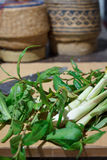 Légumes frais pour le cuisinier Photos stock