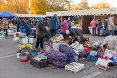 Légumes frais prêts pour la vente au marke traditionnel d'agriculteurs Photo stock