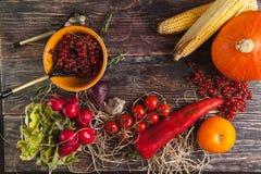 Légumes frais sur la table en bois en automne Photo libre de droits