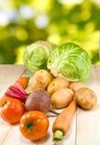 Légumes frais sur le plan rapproché vert de fond Images libres de droits