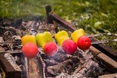 Légumes grillés sur le Caucasien photos stock