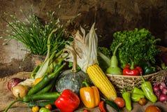 Légumes, herbes et fruit toujours de la vie. Photos libres de droits