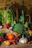 Légumes, herbes et fruit toujours de la vie. Images libres de droits