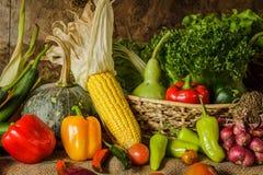 Légumes, herbes et fruit toujours de la vie Images stock