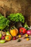 Légumes, herbes et fruit toujours de la vie Image stock