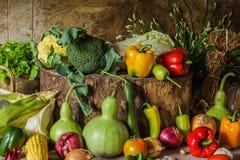Légumes, herbes et fruit toujours de la vie Image libre de droits