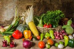 Légumes, herbes et fruit toujours de la vie Photo libre de droits