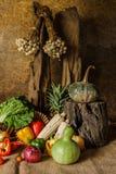 Légumes, herbes et fruits toujours de la vie. Images stock