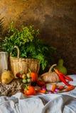 Légumes, herbes et fruits toujours de la vie Photo libre de droits