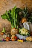 Légumes, herbes et fruits toujours de la vie Image stock