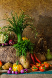Légumes, herbes et fruits toujours de la vie Photos libres de droits