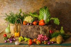 Légumes, herbes et fruits toujours de la vie Image libre de droits